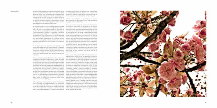 The Life and Love of Trees internal spread 2